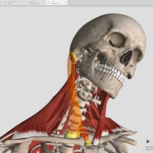Complete Anatomy 2019 Software For Mac